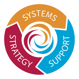 What We Do: Strategy, Systems & Support